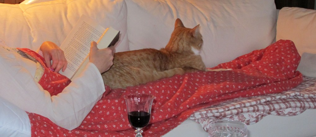 Maxi auf dem Sofa
