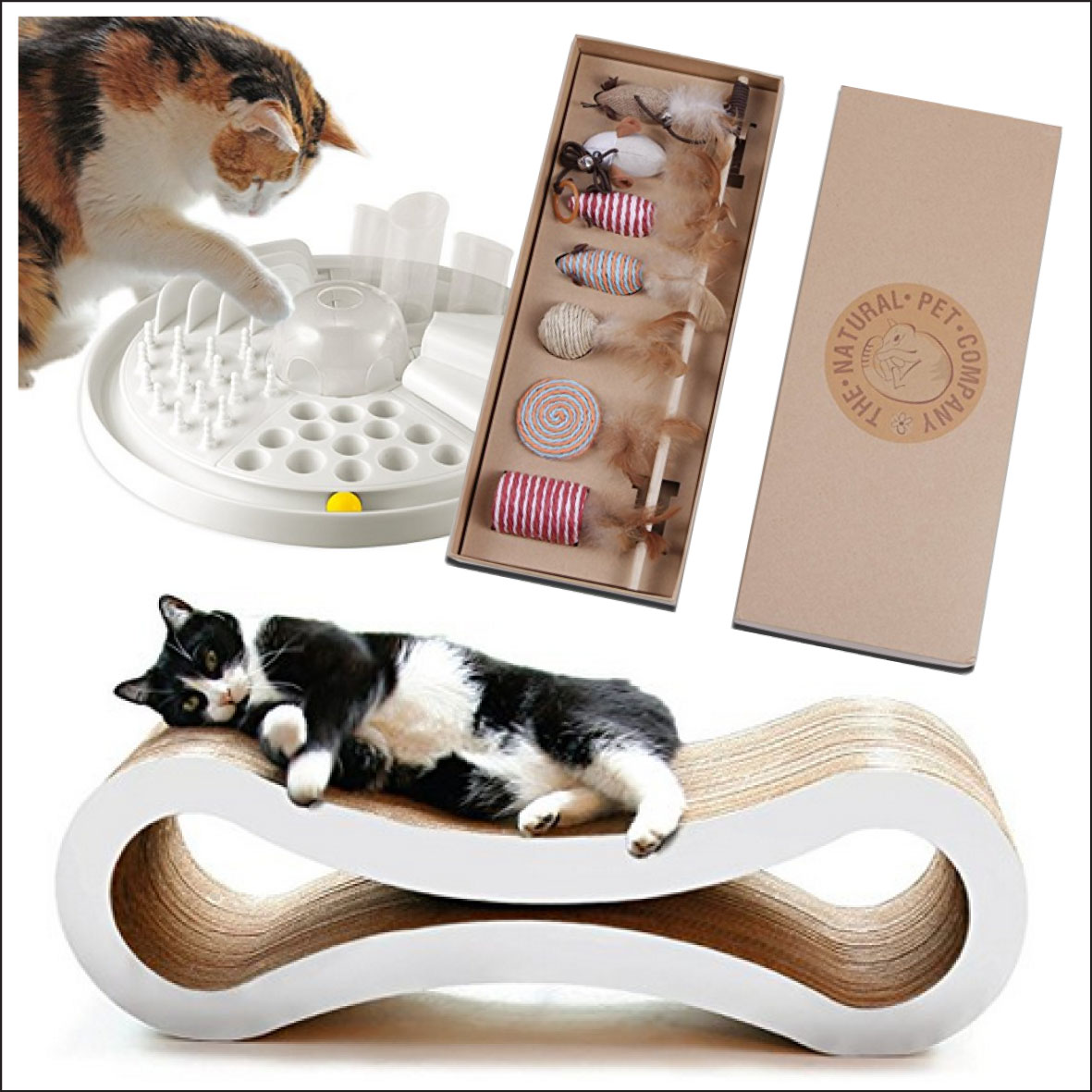 Produkte für Katzenhalter